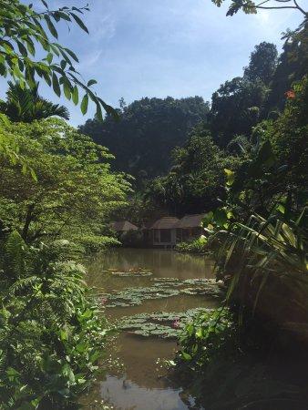 The Banjaran Hotsprings Retreat: Water villas