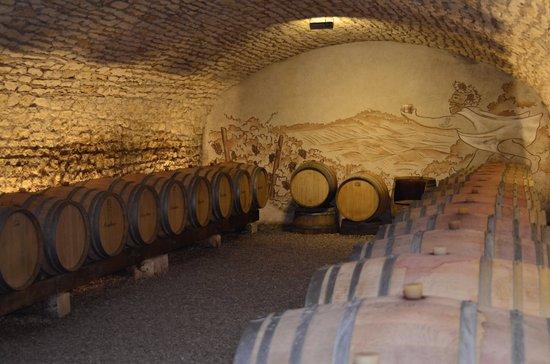 Thauvenay, France : Visite de la Cave Eric Louis