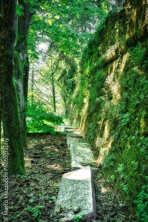 Castello di Novi Ligure : Sotto le mura, una volta ci si poteva sedere, adesso solo con un po di buona volonta'