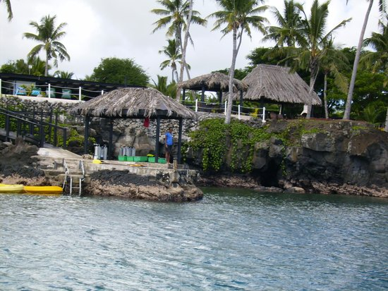 ‪‪Paradise Taveuni‬: Resort from dive boat‬