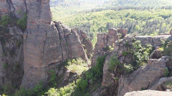 Vidin Province