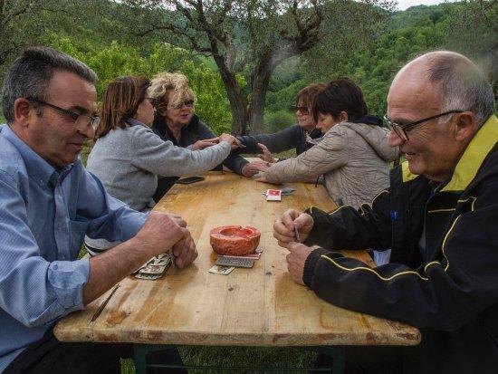 Monteciccardo, Italia: giocare sul prato