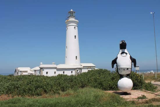 Cape St Francis, Afrika Selatan: Lighthouse Refurbished