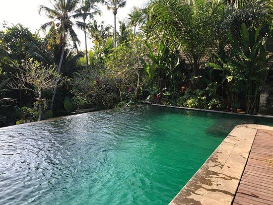 Ananda Cottages: Hôtel très agréable dans un environnement de rêve. Cuisine simple et bonnes. Piscines au calme.