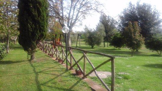 Agriturismo La Pellegrina: Giardino 2