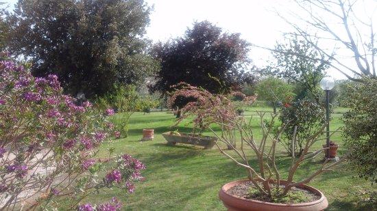 Agriturismo La Pellegrina: Giardino 4