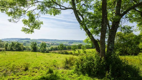 Wootton Fitzpaine, UK: Countryside around Wodetone