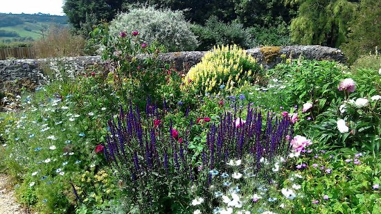 Wootton Fitzpaine, UK: The Garden at Wodetone