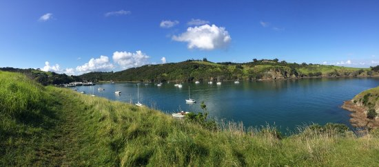 Waiheke Island, New Zealand: photo4.jpg