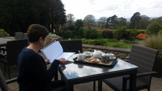 Hawkchurch, UK: Afternoon tea