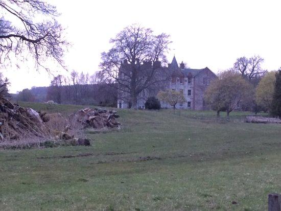 Alyth, UK : Bamff estate,  wild beavers, wild life heaven,