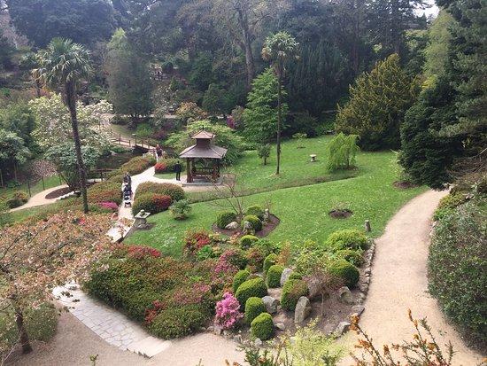 Japanese Gardens Powerscourt Gardens April 2017 Picture Of Powerscourt Gardens And House