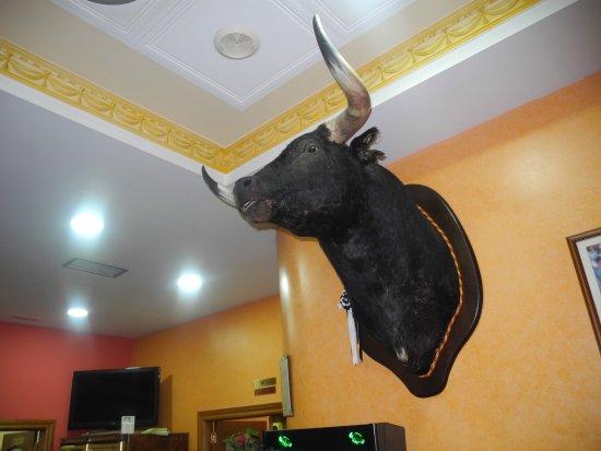 Siete Iglesias de Trabancos, España: Wanddekoration im Café-Barsaal