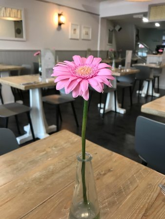 The Pizza Cafe: Th new look