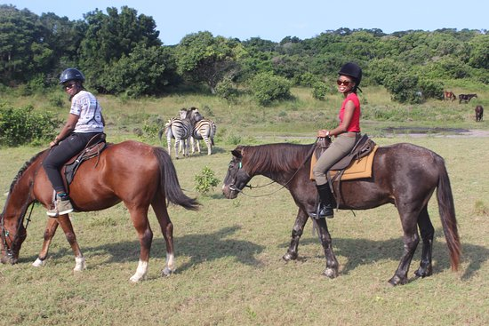 St. Lucia (alle), Sydafrika: game viewing on horseback
