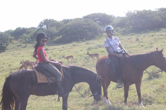St Lucia, South Africa: game viewing on horseback