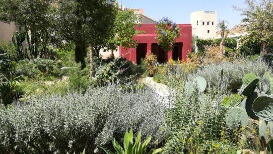 Le jardin exotique picture of le jardin secret for Jardin secret