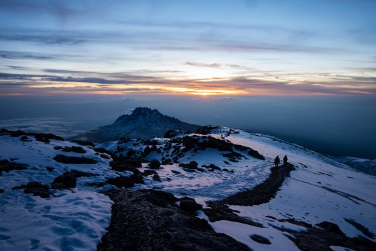 Kilimanjaro Brothers Climbing Adventure