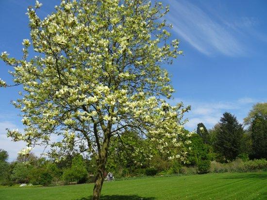 Arboretum de Dreijen