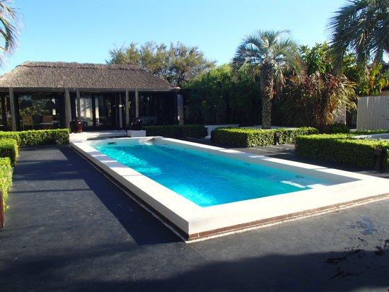 "Arbol Casa Loft : ""Linda area de Piscina"""