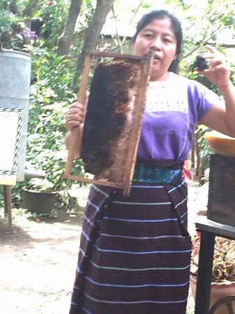 San Juan la Laguna, Guatemala: Wonderful presentation with pride, and knowledge ... I thought I knew my bees, but I had no clue