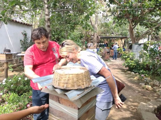 San Juan la Laguna, กัวเตมาลา: Checking out the bee's doing their thing!!