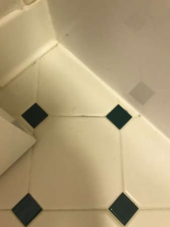 La Quinta Inn Pittsburgh Airport: hair on dirty bathroom floor upon check in