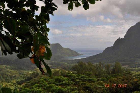 Moorea, Polinesia Francesa: Opunohu Bay