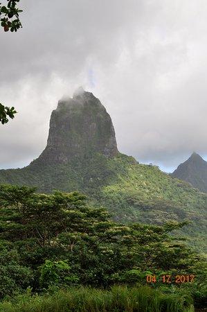 Moorea, Polinesia Francesa: Beautiful!