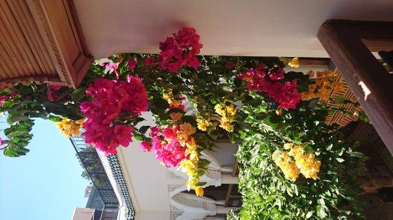 Tres Bon Sejour Au Riad Fleur D Orient Picture Of Riad Fleur D