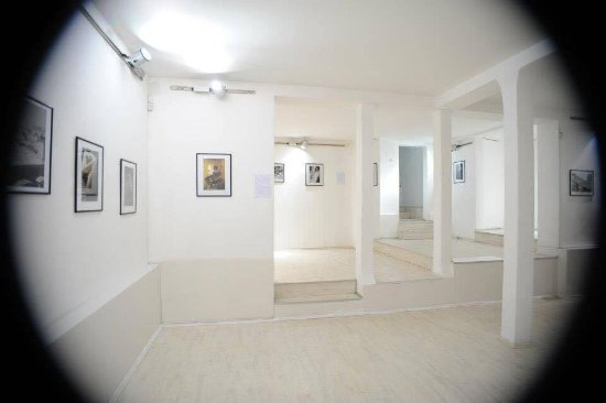 Gala Gallery