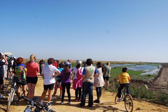 Aznalcazar, Spain: Ruta hacia la Marisma con Guadiamar Educa