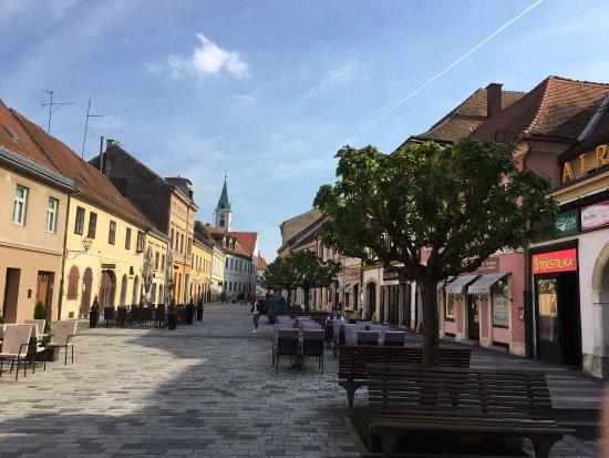 Old Castle (Stari Grad) : photo2.jpg