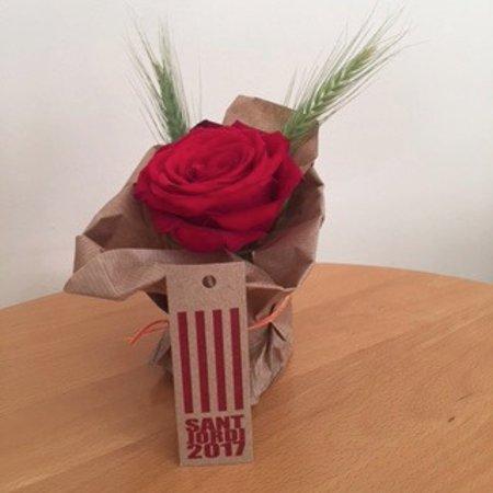 Parador de Vic-Sau: Bij aankomst op Sant Jordi kregen we een boekje met gedichten en deze roos!!