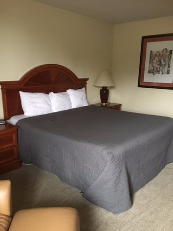 Shawano, WI: Single King Handicapped Room