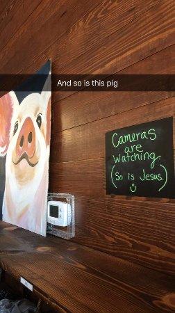 Wolfforth, TX: pig