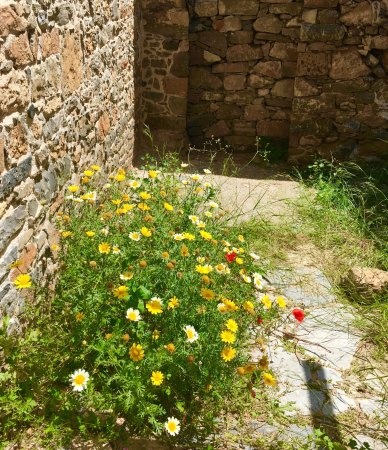 Spinalonga (Kalydon): An other sunny warm and beautiful day in ELOUNDA ...