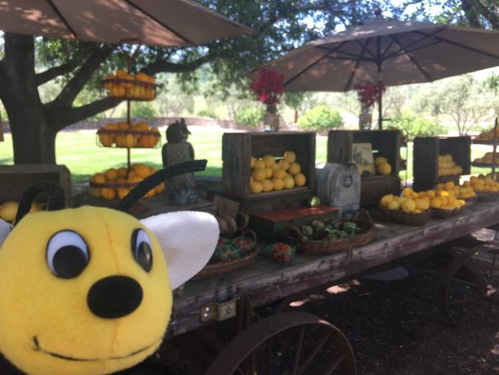 Napa Valley, CA: Bee approved farm stand