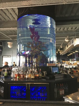 Dive Bar Restaurant : Giant aquarium