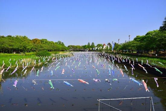 Tsuruuda River