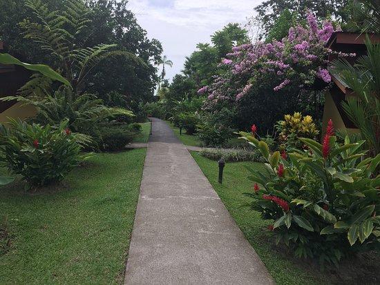 Catarata Eco Lodge S.A: Me encantaron los jardines, el contacto con la naturaleza realmente se convierte en un punto  ex
