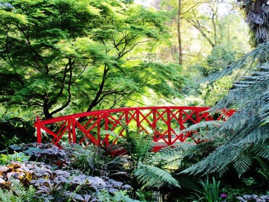 Japanese style bridge picture of abbotsbury subtropical for Japanese style bridge