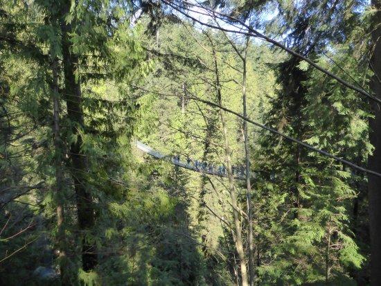 North Vancouver, Canada: The suspension bridge
