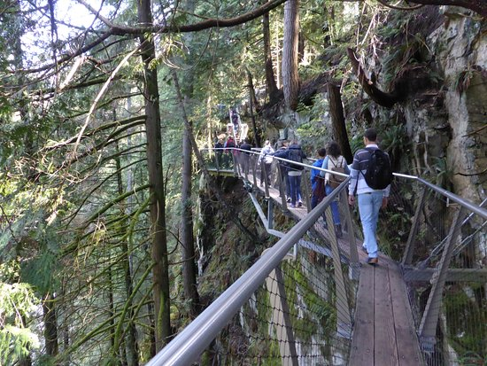 North Vancouver, Canadá: The cliff hang walk.