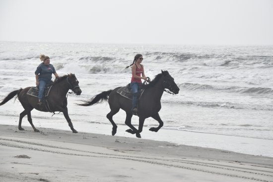 Inlet Point Plantation Stables: The experienced beach ride!