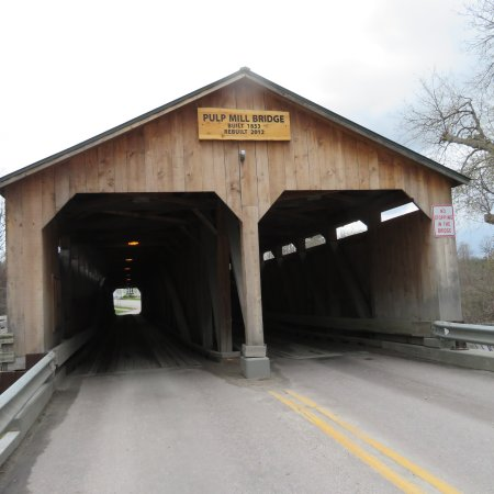 Pulp Mill Covered Bridge: IMG_0684_large.jpg