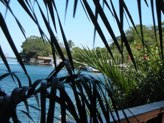 Anthony's Key Resort Image