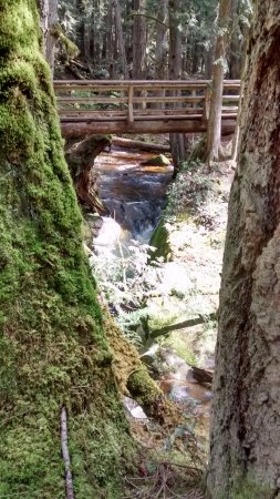 Roberts Creek, Canadá: Beautiful creeks and waterfalls !