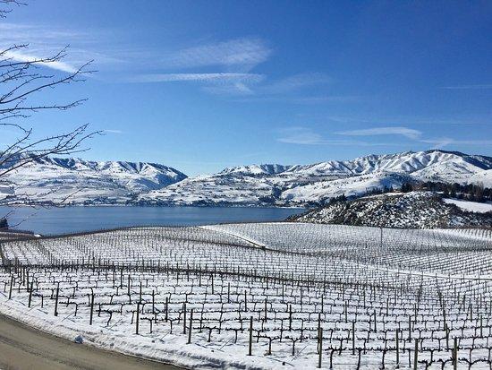 Benson Vineyards Estate Winery Photo