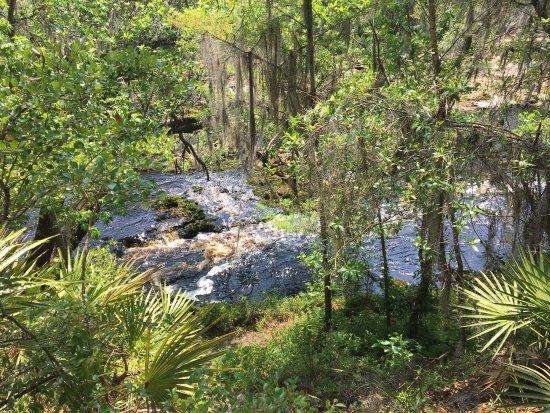 White Springs, FL: photo1.jpg